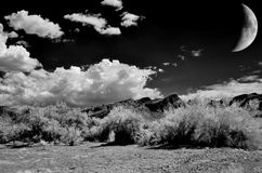 Sonora Pustynna księżyc Obrazy Royalty Free