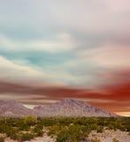 Sonora Pustynny zmierzch Obrazy Stock