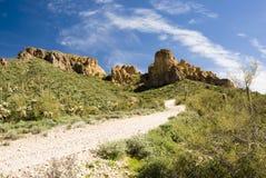 Sonoran desert. Scenic view of the Sonoran desert wilderness in Arizona royalty free stock images