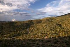 Sonoran Desert in Arizona. A view of the Sonoran Desert in Saguraro National Park near Tucson, Arizona royalty free stock photos