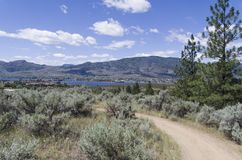Sonoran Desert Landscape with Osoyoos Lake in the distant backgr. Desert landscape with Spirit Ridge resort buildings and Lake Osoyoos in the background royalty free stock photography