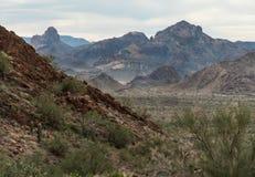 Sonoran Desert landscape, western Arizona. Sonoran Desert landscape in the Kofa National Wildlife Refuge, western Arizona stock photo