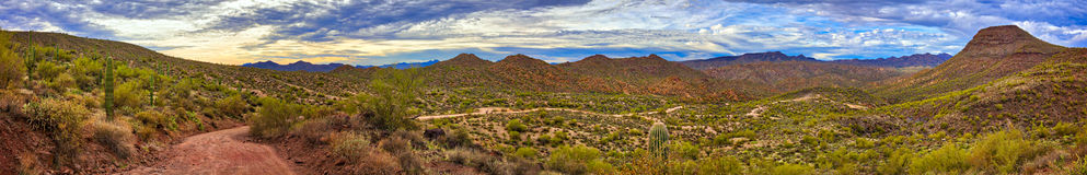 Sonoran Desert. Panorama of Sonoran Desert near Phoenix, Arizona Royalty Free Stock Photography
