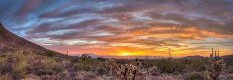 Sonoran desert panoramic sunset. Beautiful and colorful Sonoran desert sunset, panorama landscape with mountains and cacti Stock Photography