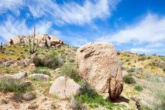 Sonoran Desert. Saguaro and boulders in Sonoran Desert royalty free stock photo