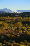 Sonoran desert. By the Superstition Mountains at sun rise with four-peaks in the background Stock Photo