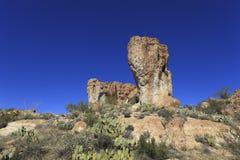 Sonoran Upland Area stock photo