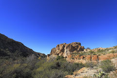 Sonoran Upland Area Royalty Free Stock Photos