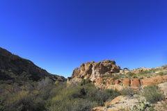 Sonoran Upland Area royalty free stock photos