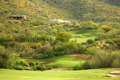 Sonoran Wüsten-Golf Lizenzfreie Stockfotos