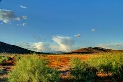 Sonoranwoestijn met Moesson stock fotografie