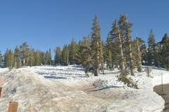 Sonorapasserande som fullständigt är snöig med några mäktiga sikter av den Yosemite nationalparken Naturloppferier royaltyfri bild