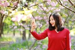 Sonrisa china asiática feliz de la muchacha de la belleza de la mujer en un campo de flor en un selfie del parque del otoño del v Fotografía de archivo