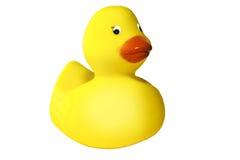 Sonrisa de goma del duckie Imagen de archivo libre de regalías