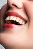 Sonrisa de una hembra joven Imagen de archivo libre de regalías