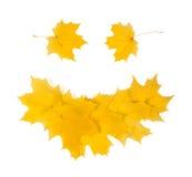 Sonrisa del otoño Fotografía de archivo libre de regalías