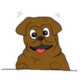 Sonrisa del perro Foto de archivo libre de regalías