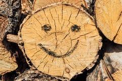 Sonrisa dibujada en carbón de leña en el primer de los palillos Imagen de archivo libre de regalías