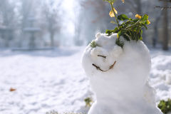 Sonrisa es invierno Fotos de archivo