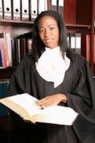 Sonrisa femenina profesional del abogado que hace la investigación Imágenes de archivo libres de regalías