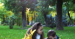 Sonrisas felices pequeño Brother lindo europeo alegre elegante de la moda hermosa y hermana Have Fun Walking en Autumn Park almacen de video
