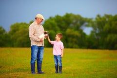 Sonson som spelar med hundvalpen på morfars händer, sommar utomhus fotografering för bildbyråer
