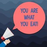 Sont le signe des textes vous montrant ce que vous mangez E illustration stock