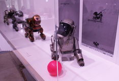 Sony Aibo Robot Dogs on Display. A group of Sony Aibo robot dogs displayed at an exhibition held at the Sony Building in Ginza, Tokyo. Photo taken December 2016 Royalty Free Stock Photo