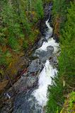 Sooke potholes and  waterfall Royalty Free Stock Images