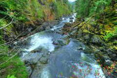 Sooke potholes and  waterfall. Creek and waterfall in sooke potholes regional park, vancouver island, canada Royalty Free Stock Photo