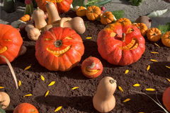 Soon holiday a Halloween. An exhibition of vegetables at rural fair in city Annecy royalty free stock photography