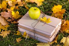 Soon to schoo. L. concept of teaching and education. books and an apple lie on the grass in a yellow foliage stock image