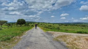 Soon Valley. Man on Road, Soon Valley & x28;punjab& x29 Royalty Free Stock Photo