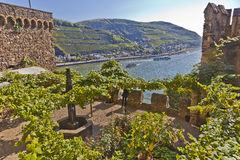 Sooneck castle. At river Rhine / Germany Royalty Free Stock Image