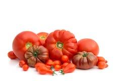 Soort tomaat Stock Afbeelding