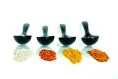 Soort vier kruiden in de ceramische lepel Stock Afbeeldingen