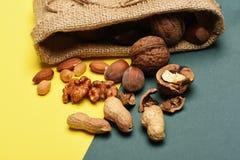 Soorten noten met gebreide zak Royalty-vrije Stock Afbeeldingen