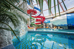 Soortengebied in Nymphaea Aquapark in Oradea, Roemenië Stock Foto