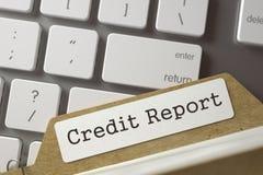 Soortsysteemkaart met Kredietrapport 3d Royalty-vrije Stock Afbeelding