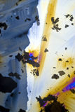 Soot particles and microcrystals. In polarized light Royalty Free Stock Photos