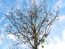 The soother tree in Spring. The soother tree against a blue Sky with many colorful baby pacifiers Royalty Free Stock Photography