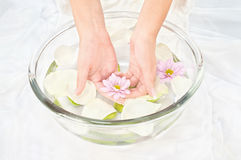Soothing petal bath. Spa composition of woman's hands, flowers and petals Stock Photo