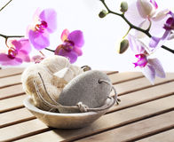 Soothing and softening loofah and pumice stone. Cure of exfoliation at beauty spa Stock Images
