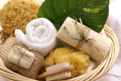 Soothing spa basket Stock Images