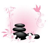 Soothing Spa rocks with bamboo and humming bird Stock Image