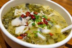 Sopa ácida dos peixes de Szechuan Fotos de Stock Royalty Free