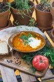 Sopa ácida shchi da couve do russo tradicional com creme de leite e ervas em uma tabela de madeira com pão, pimenta e salsa foto de stock