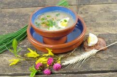 Sopa amarga apetitosa Fotos de archivo libres de regalías