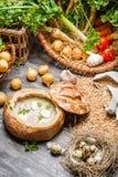 Sopa amarga con el huevo de codornices y las verduras frescas Fotografía de archivo libre de regalías