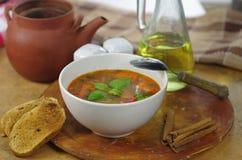 Sopa apetitosa de la col Foto de archivo libre de regalías